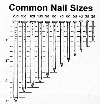 Common_nails_1.jpg